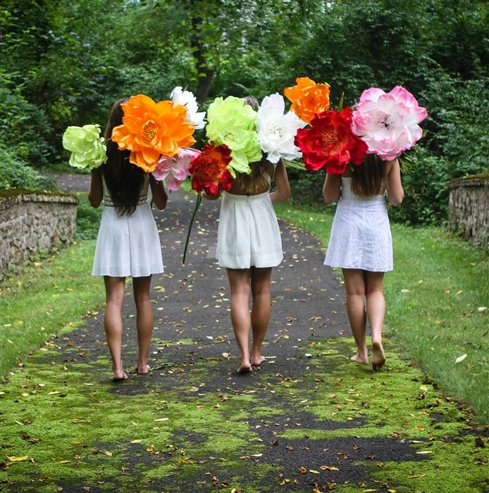 17 Best Images About Giant Paper Flowers On Pinterest