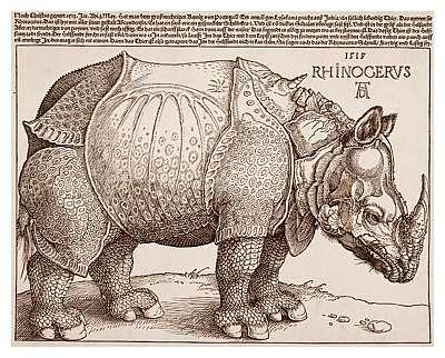 Albrecht Durer's rhinoceros woodcut print from 1515. Amazing.:
