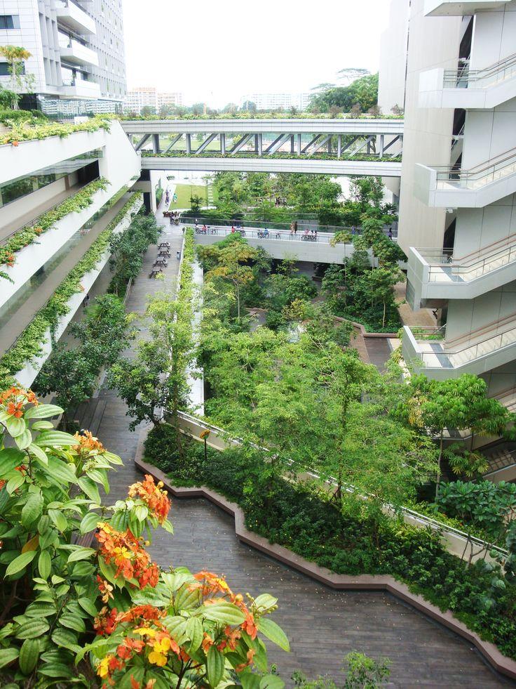 Khoo Teck Puat Hospital in Singapore by RMJM LANDSCAPI