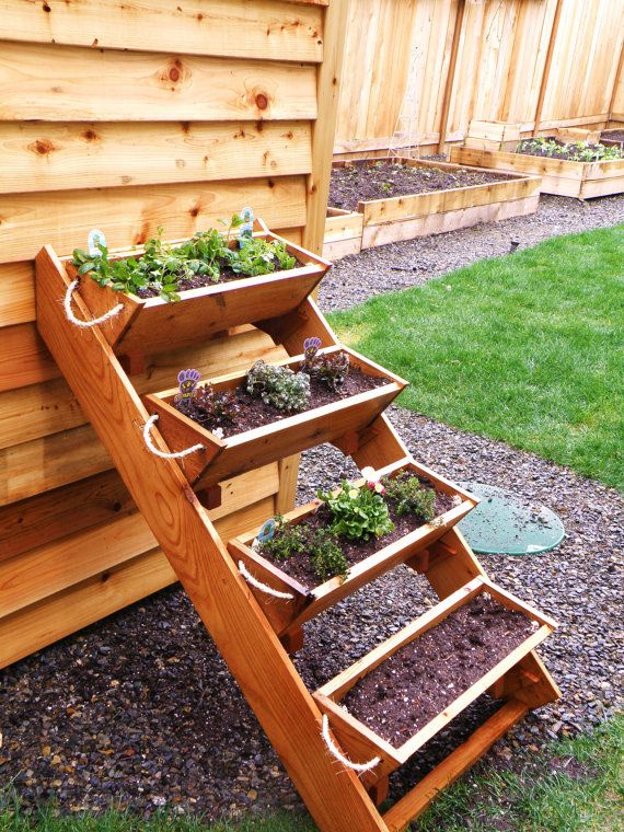 "36"" Cedar Herb, Tomato, Flower, and Strawberry gardening"