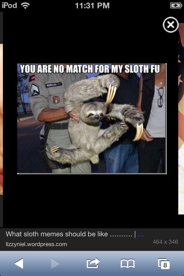 Cute sloth meme Sloth meme Pinterest