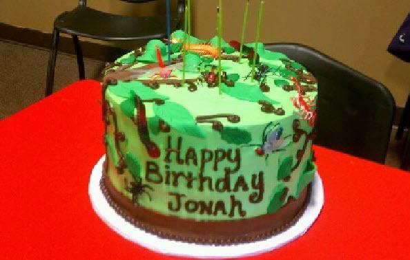 Bug Themed Birthday Cake Cakes I Made Pinterest