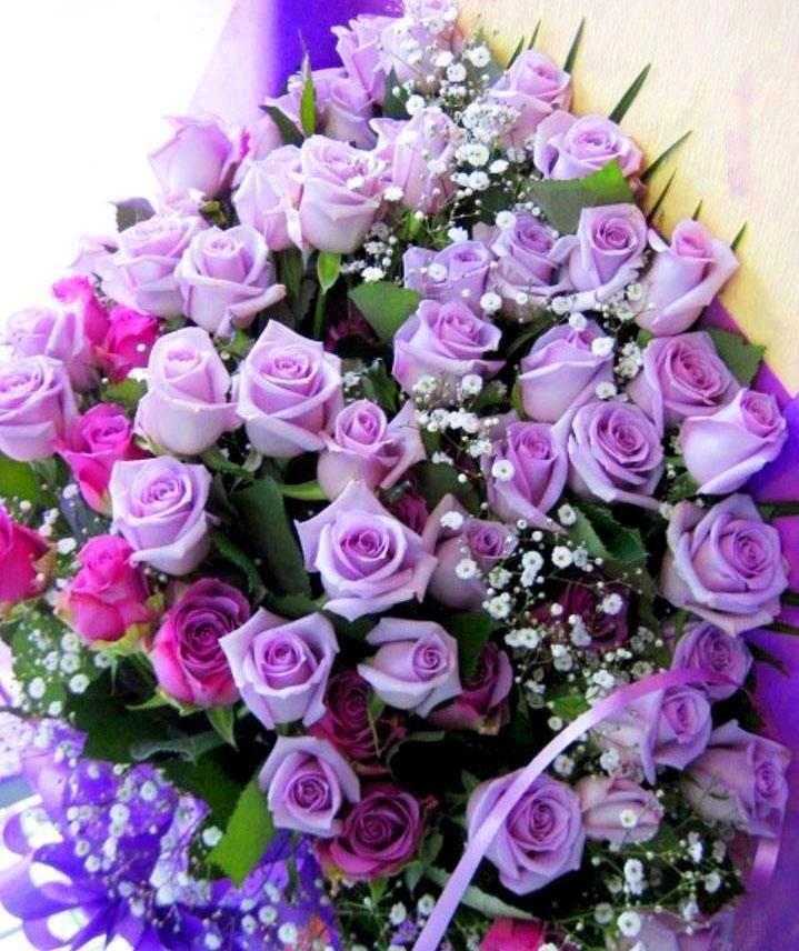 A huge bouquet of purple roses THE COLOUR PURPLE