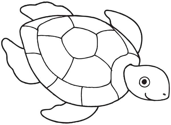 coloring page quot honu quot sea turtles pinterest sea turtles turtles