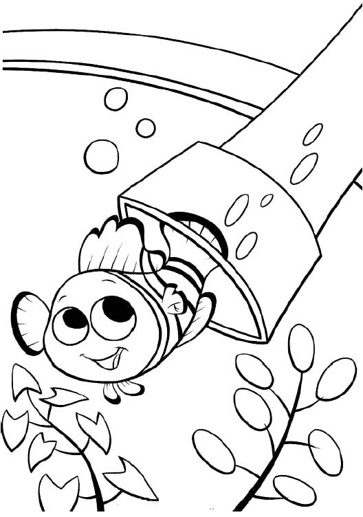 nemo lantern fish coloring sheet coloring pages