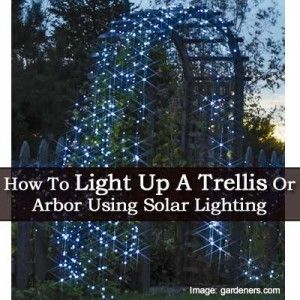 How To Light Up A Trellis Or Arbor Using Solar Lighting