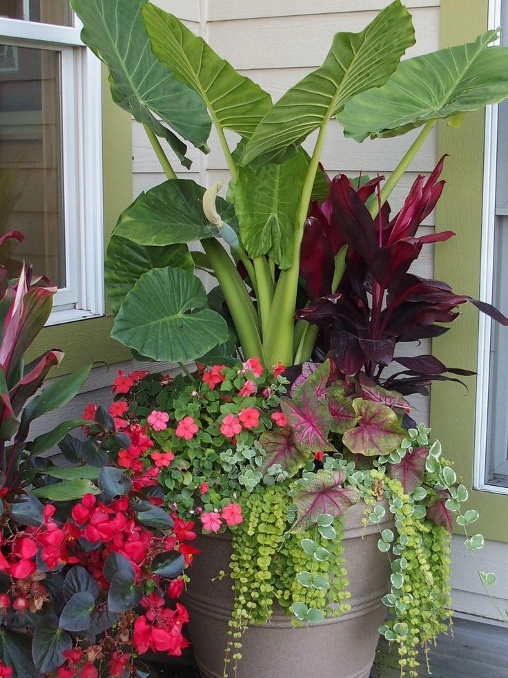 Raised Garden Planter Canada
