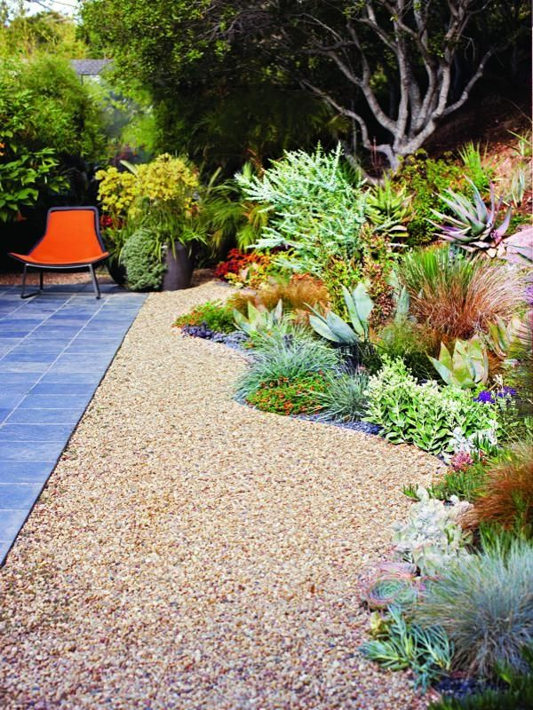 A gorgeous California no-lawn garden — love that curvy border of succulents and