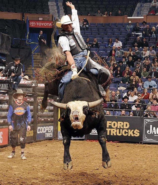 Professional Bull Riding Photos rodeo