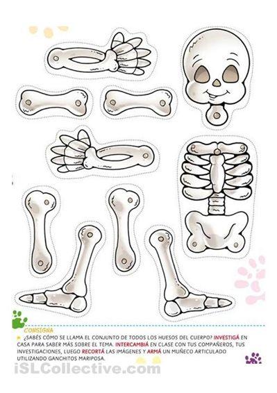 Halloween Skeleton Worksheet