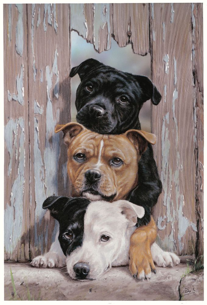 Detalles de STAFFORDSHIRE BULL TERRIER DOG LIMITED EDITION