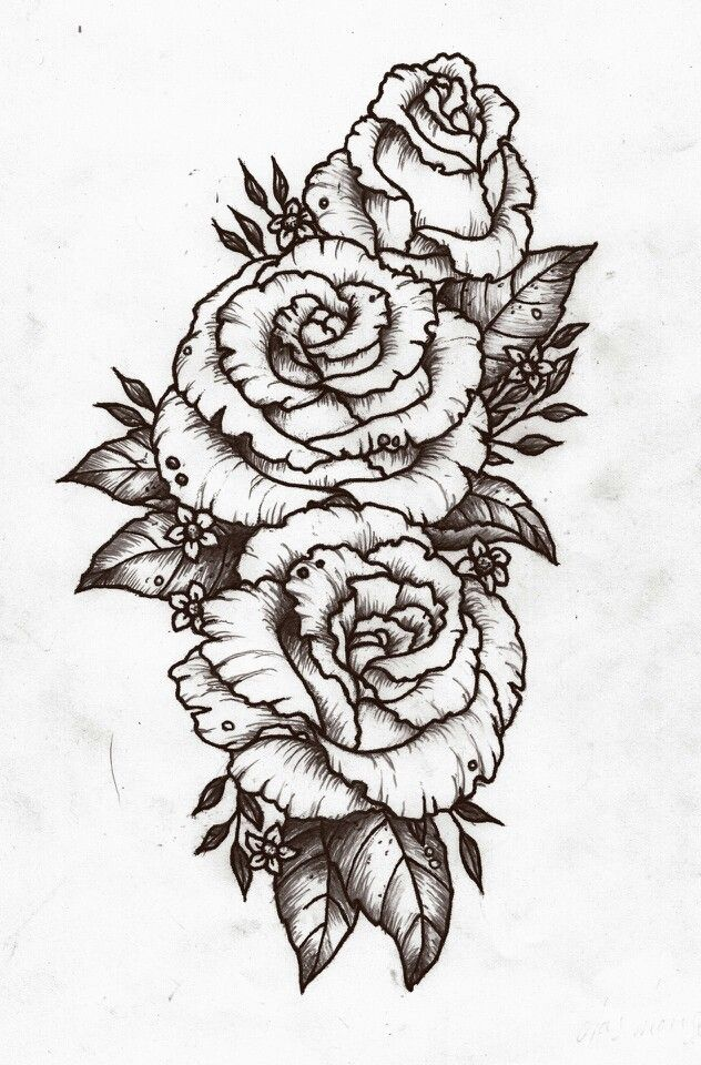 Rose design tattoo Pinterest Design, Roses and Posts