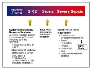 Images Of Sepsis Concept Map Google Search Admitologist