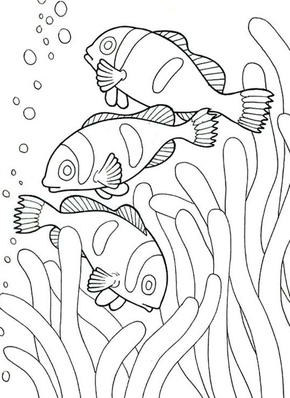 Draw remodel coloring pages for adults with sea Coloring