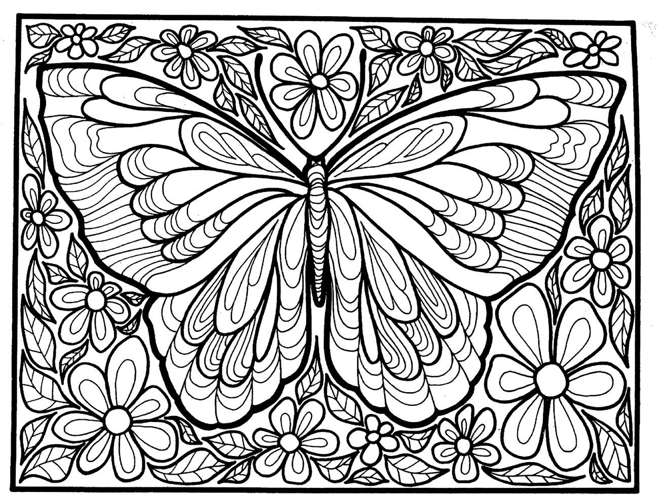 1000 images about butterfly coloring pages on pinterest adult