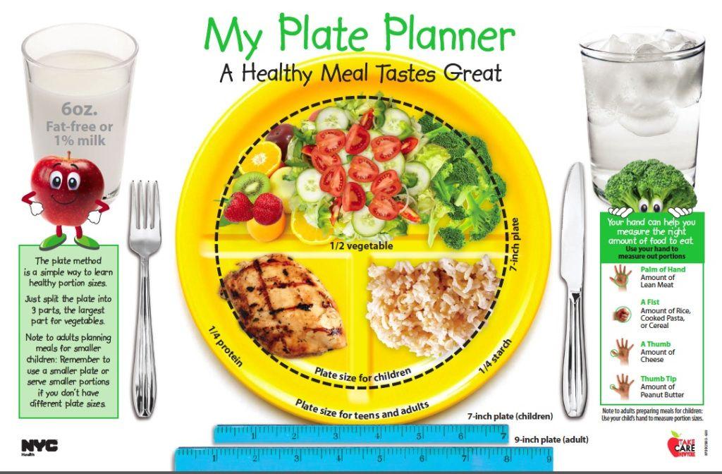 Health & Nutrition Kids Plate Nutrition for Children