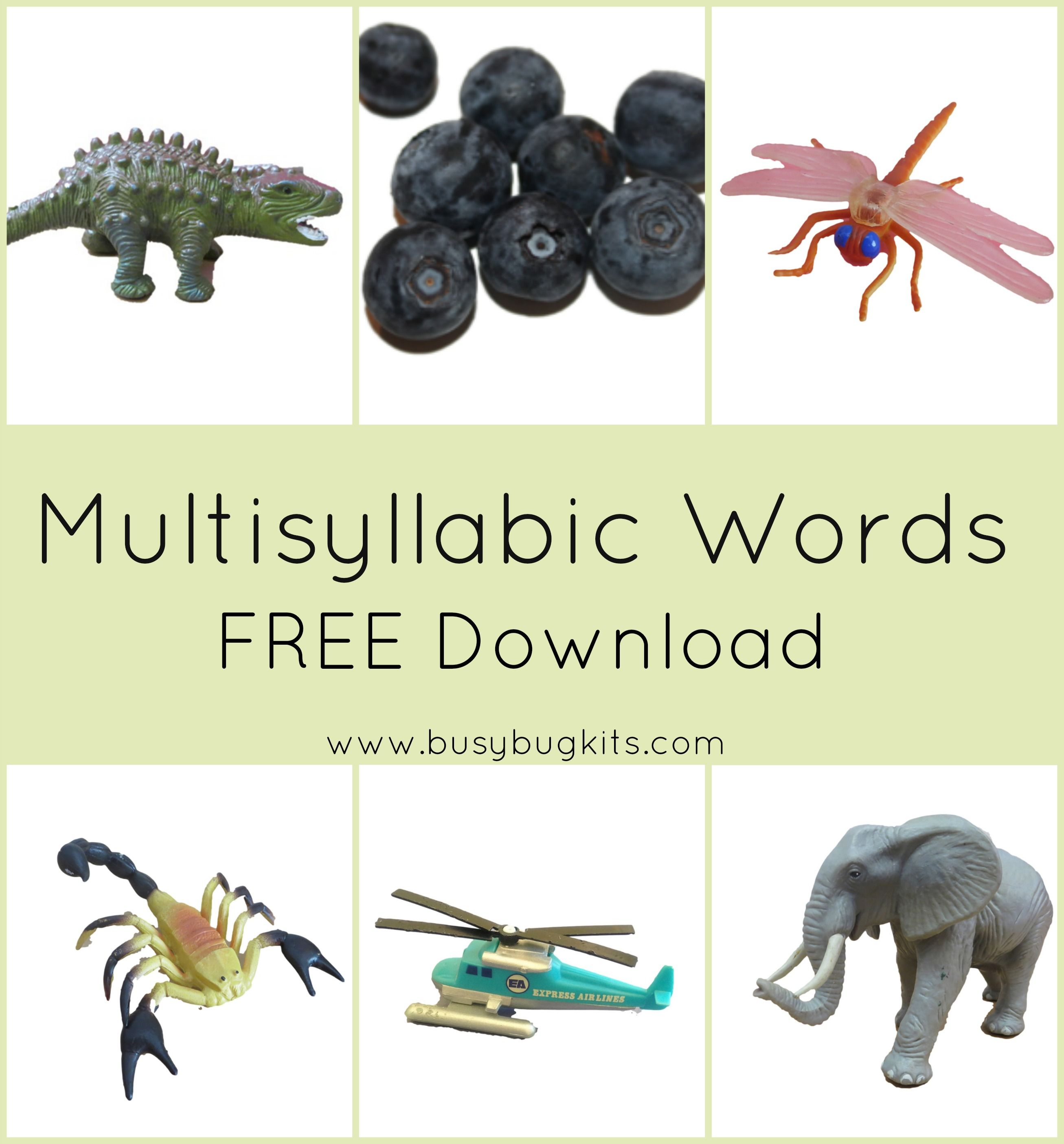 3rd Grade Multisyllabic Word List Printable