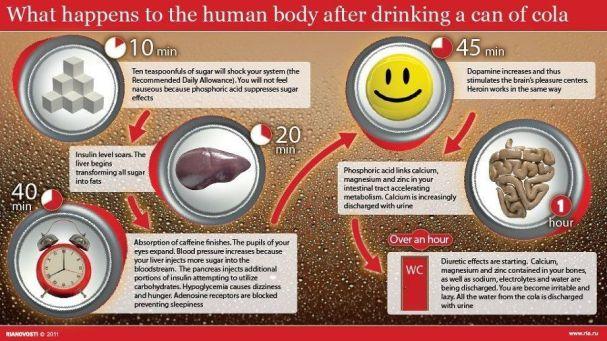 Imagini pentru coca cola liver steatosis risk
