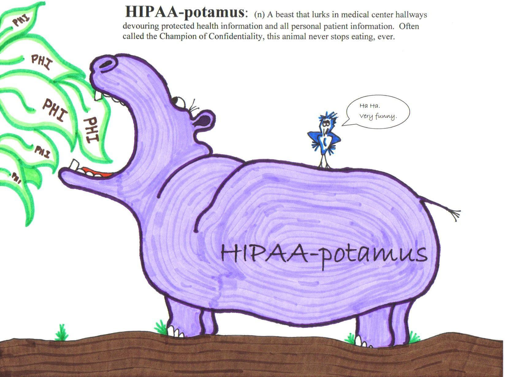 HIPAApotamus HIPAA Pinterest
