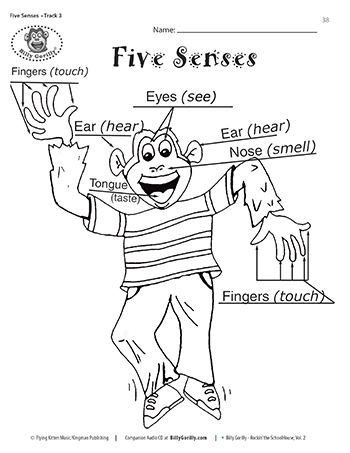 Sense Of Hearing Activities And Print Five Senses Coloring Page
