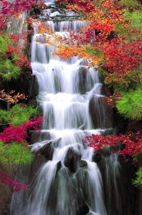 Autumn Waterfalls Red Nature Trees Autumn Leaves Fall