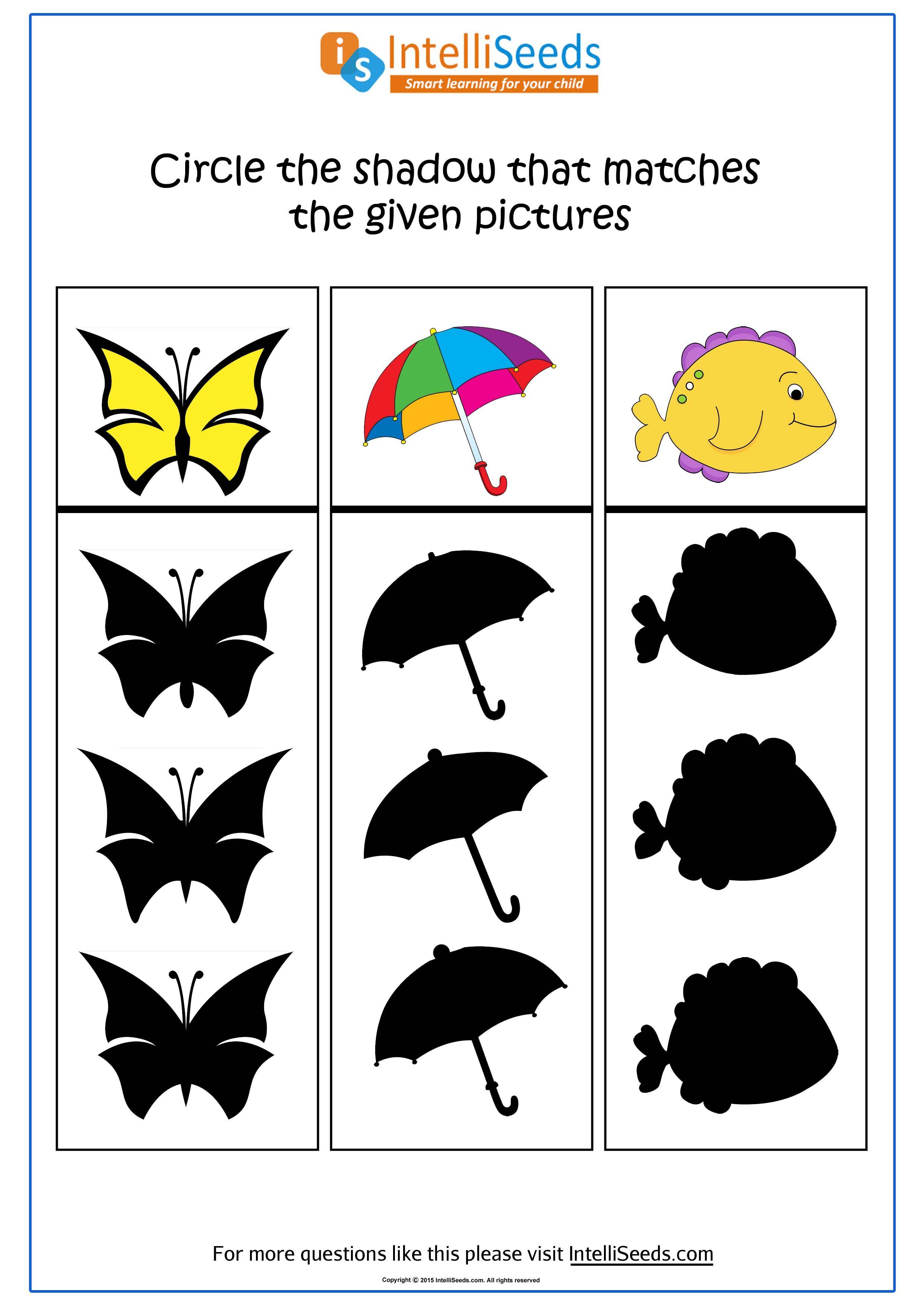 Shadow Matching Worksheet