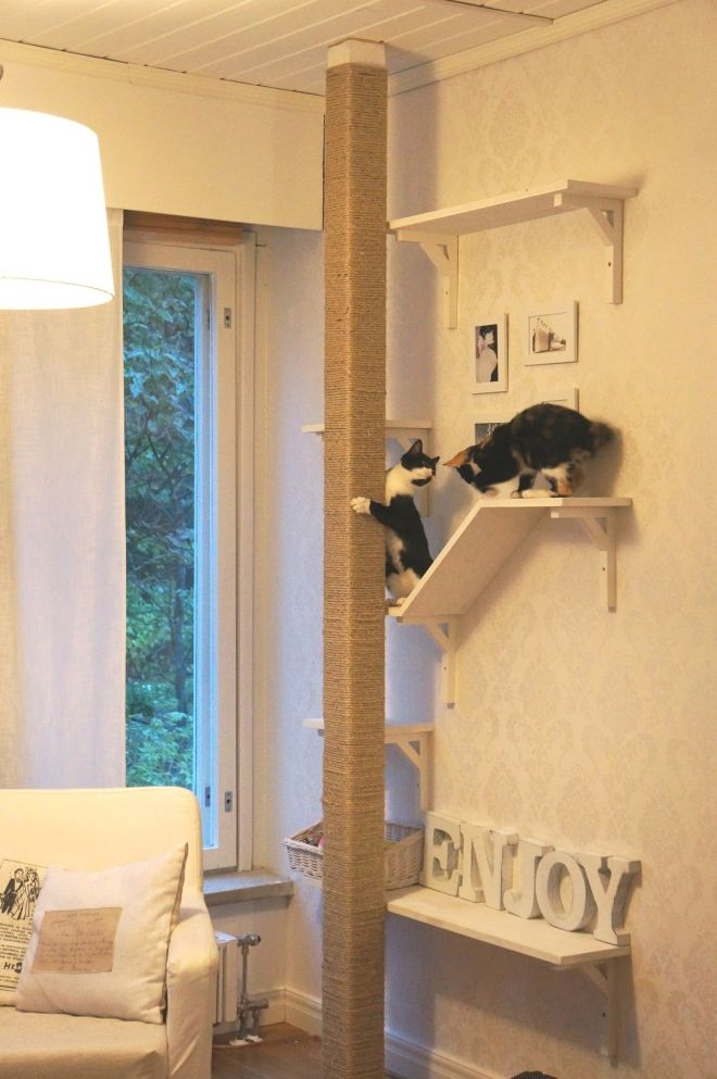 Creative cat scratch postshelving but if we built it