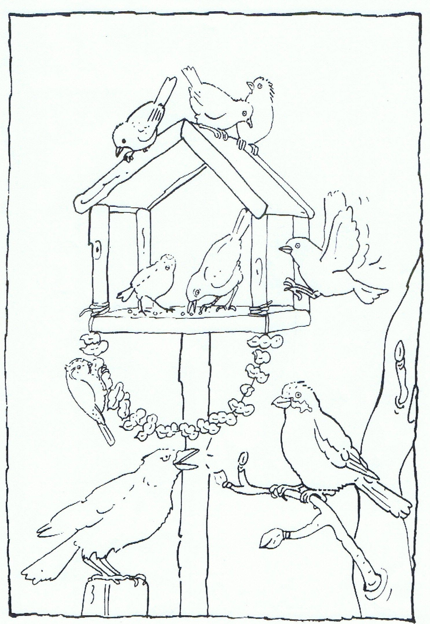 Feeding Birds In Your Garden Coloring Page