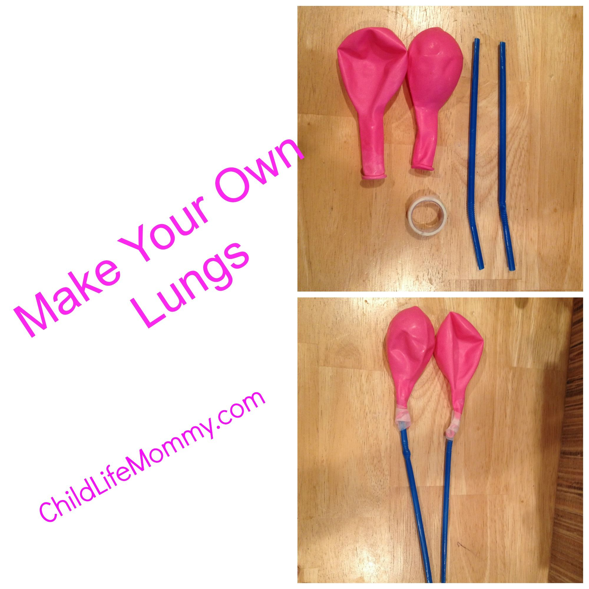 Diy Lungs To Make To Help Children With Asthma Cystic