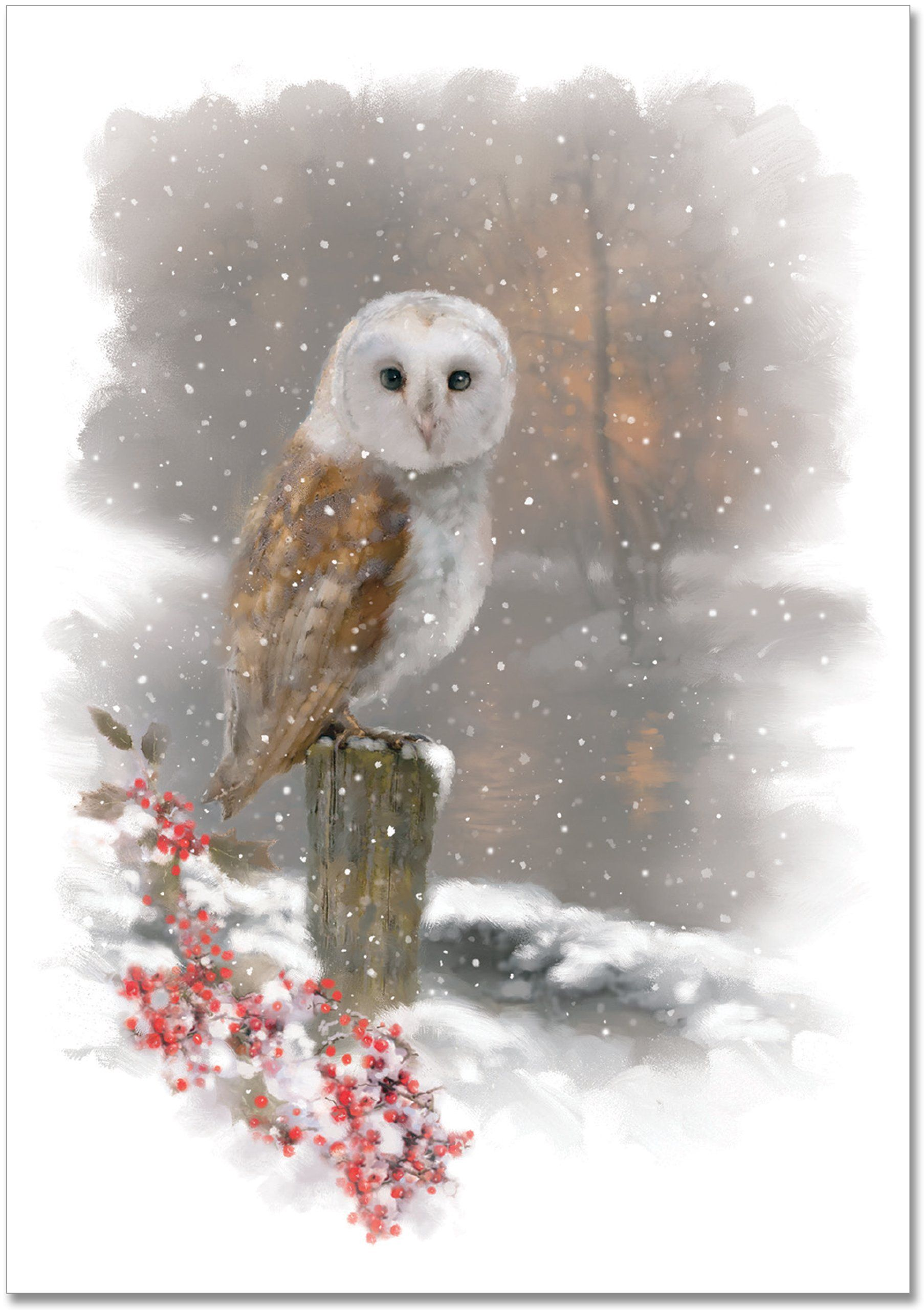 Winter Owl Small Boxed Holiday Cards (Christmas Cards
