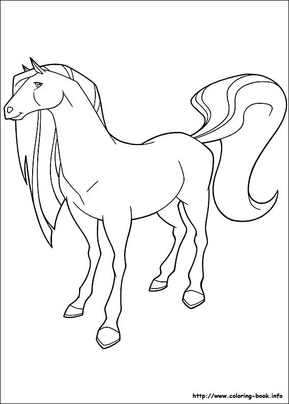 1000 images about horseland malesider on pinterest coloring