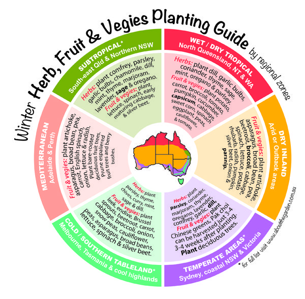 Winter planting guide for Herbs, Fruit & Vegies What will