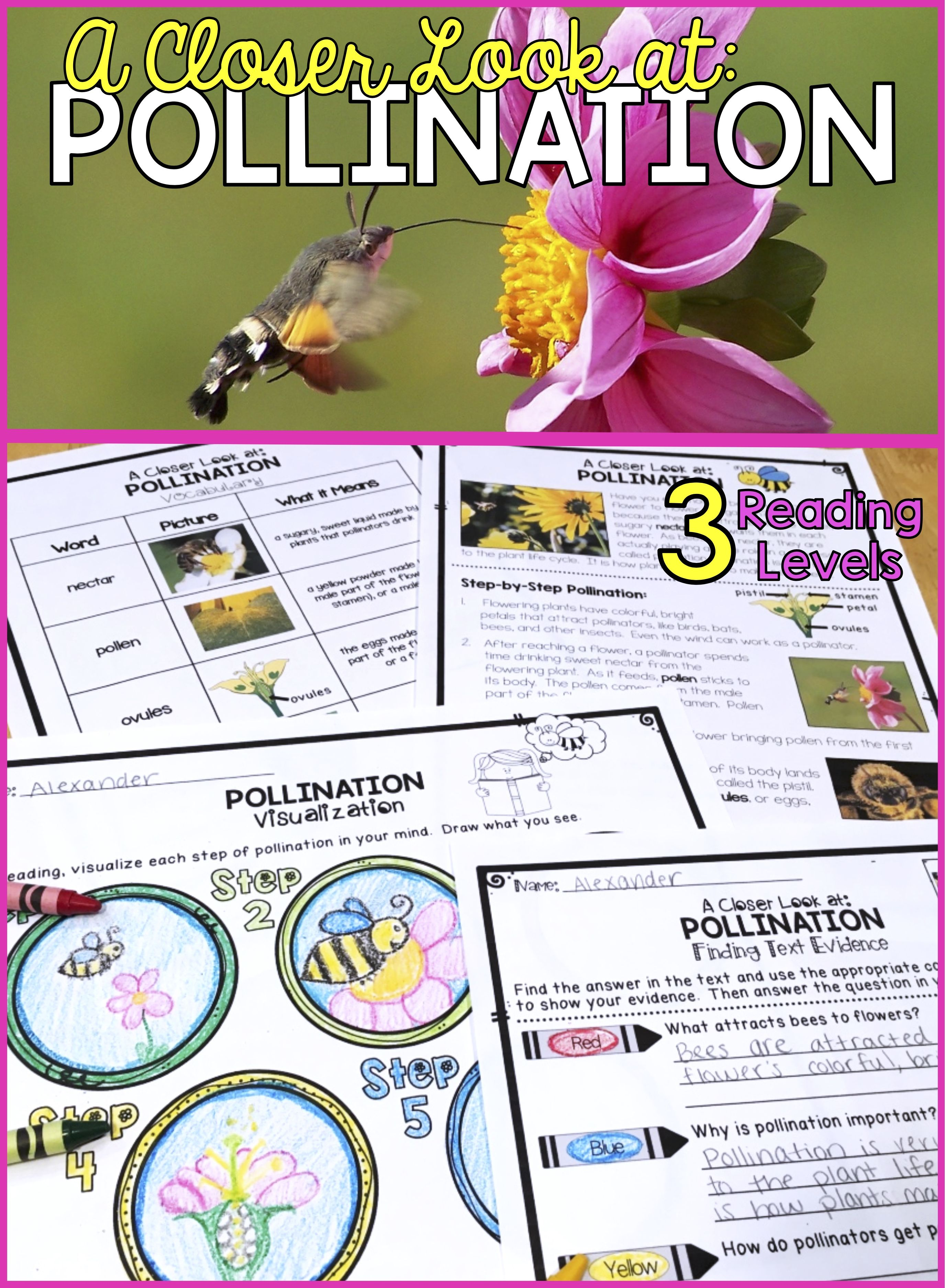 Plants Differentiated Pollination Reading Passage