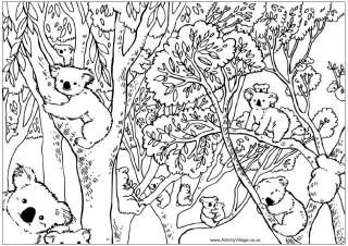 1000 images about colouring pictures on pinterest colouring in