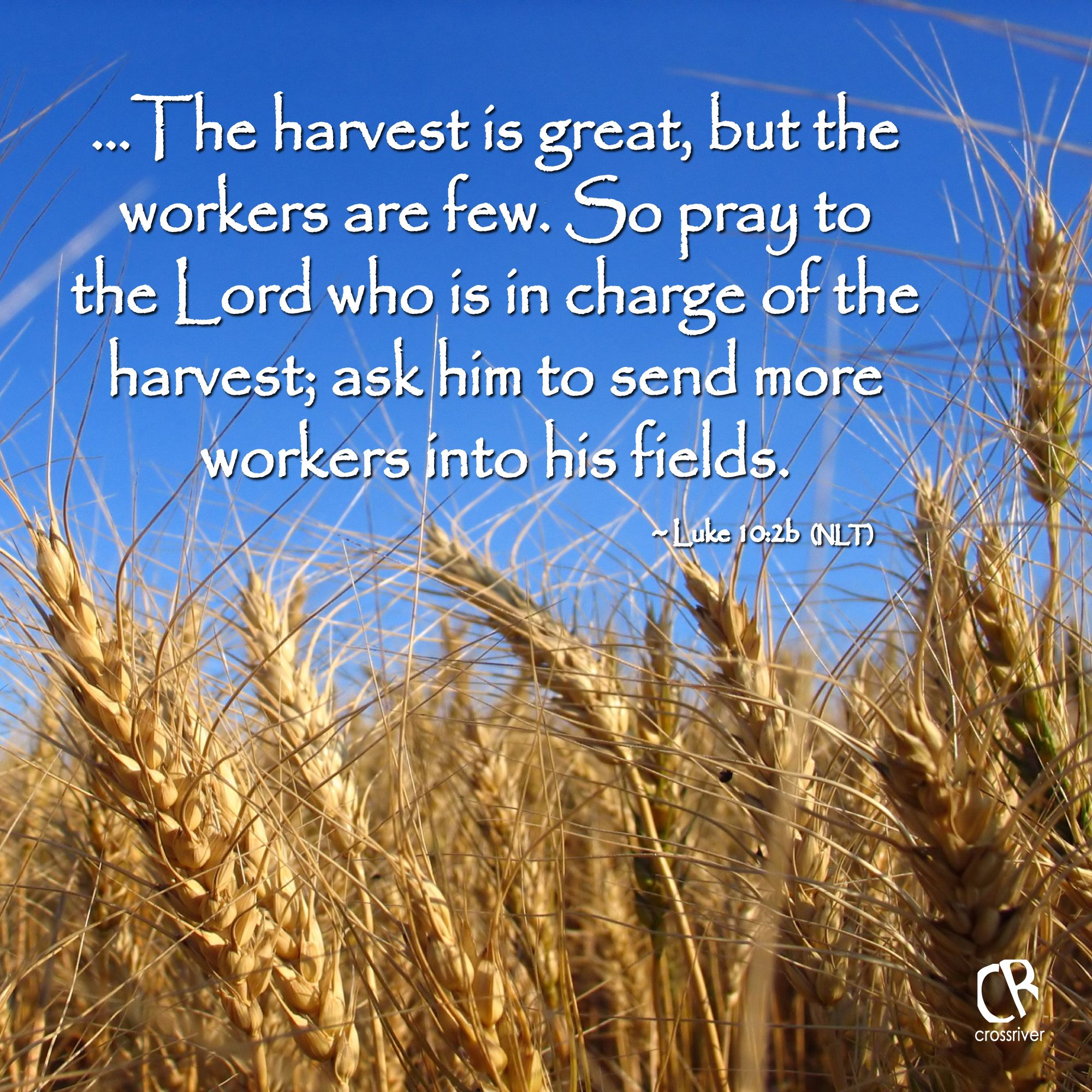 E Harvest Is Great But The Workers Are Few So Pray To The Lord Who Is In Charge Of The