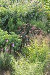 Luxus Gartenideen Kleiner Garten Design