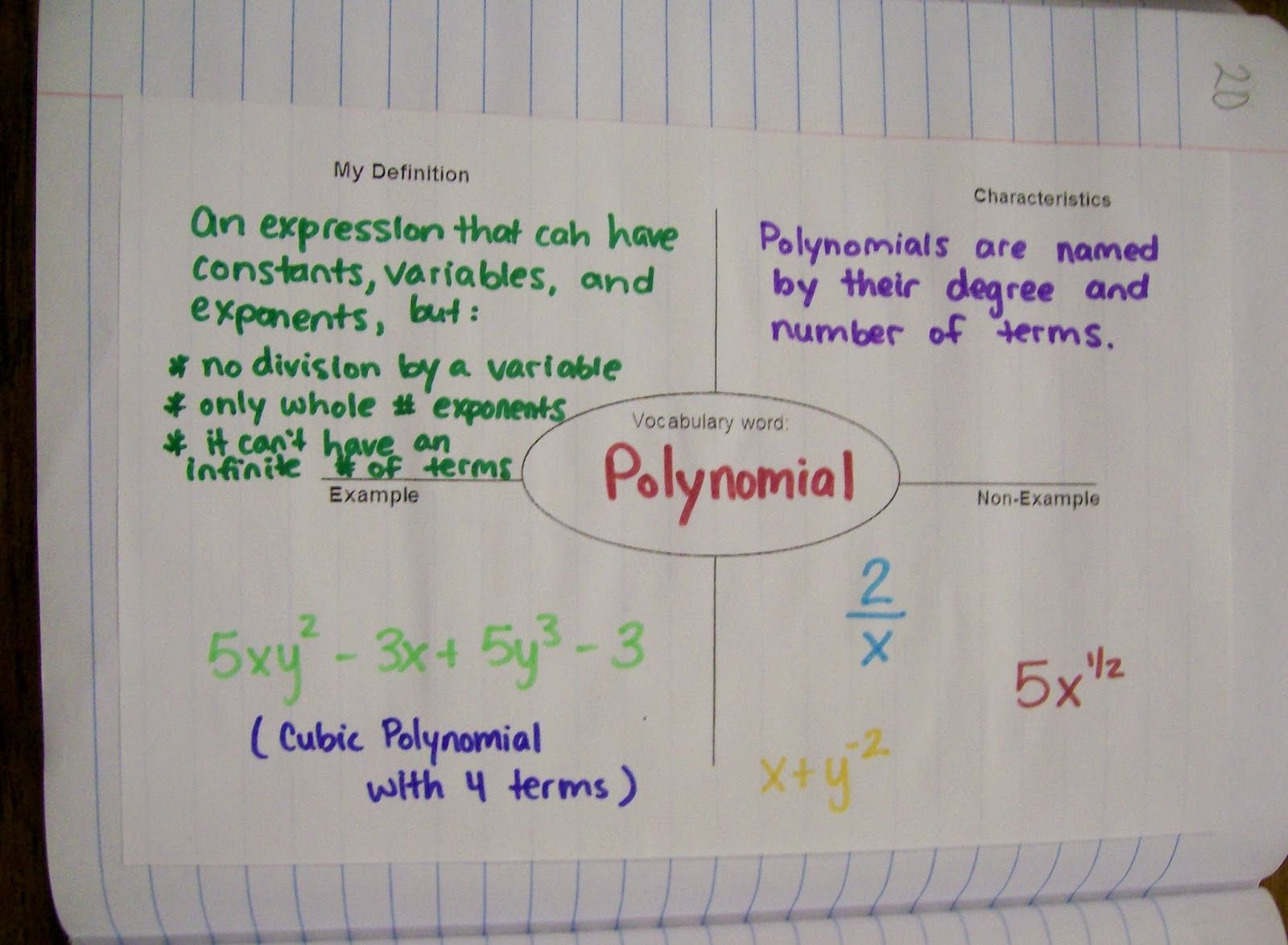 Types Of Polynomials Poster