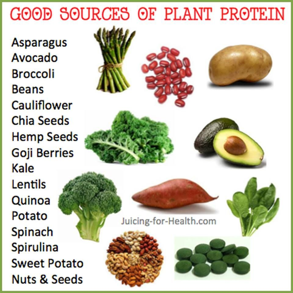 PROTEINS Good Sources of Plant Protein See link http