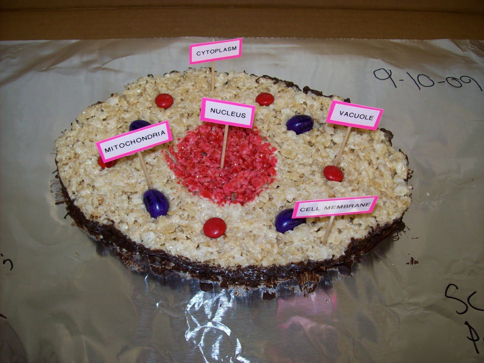 3d Animal Cell Project Ideas Image Search Results Cakepins