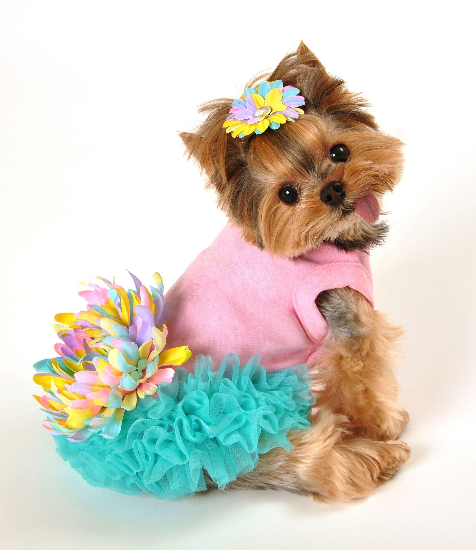 Leilani Dog Dress All Things Pet Care/ Fashion