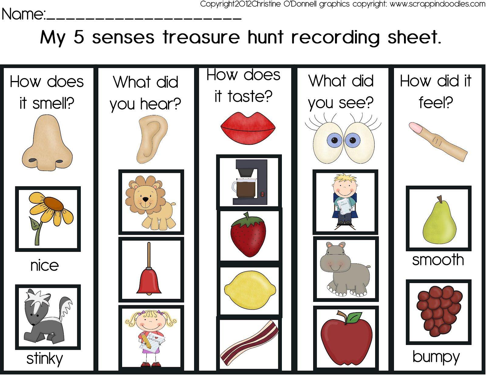 Image Result For 5 Senses Scavenger Hunt