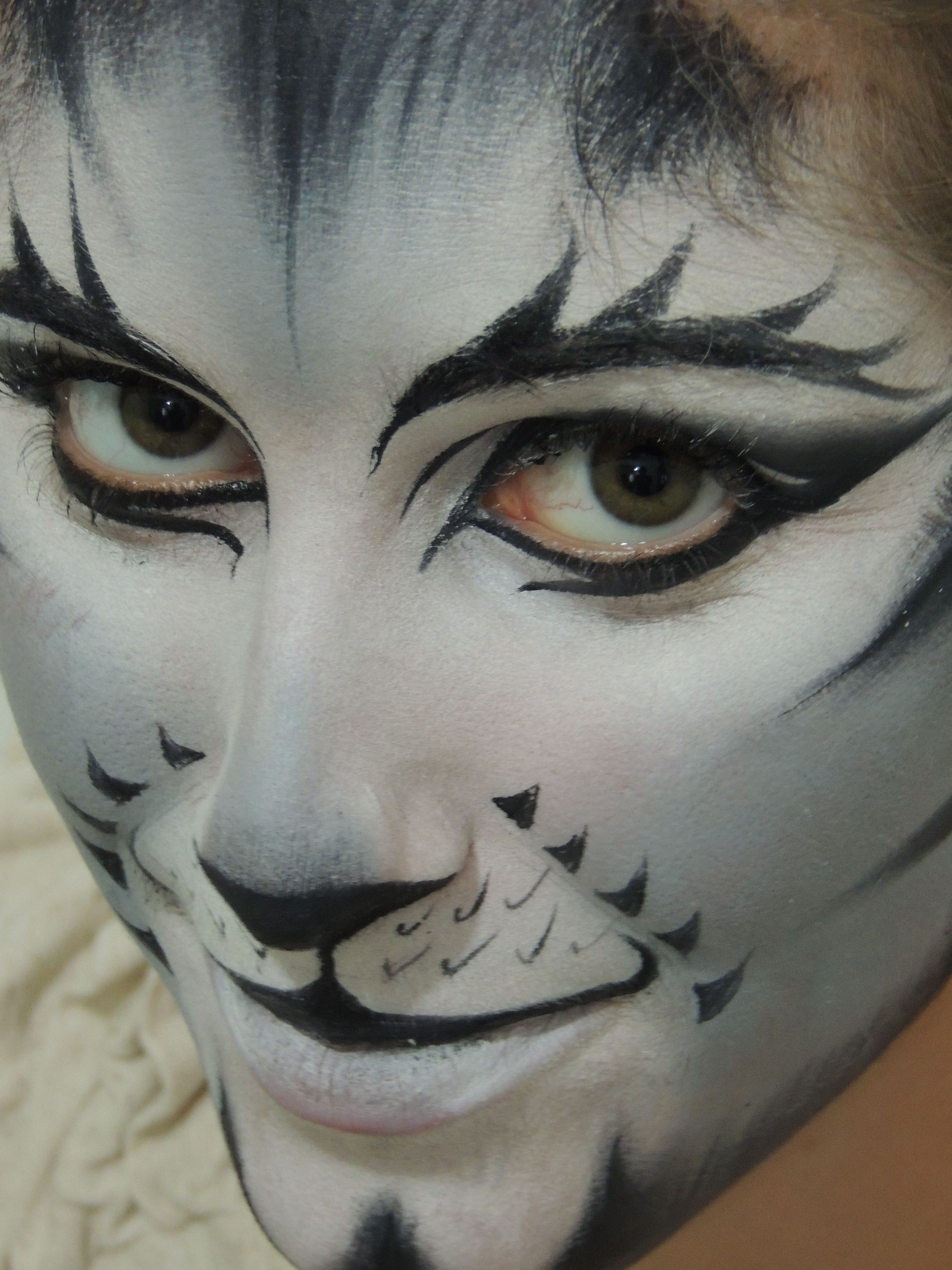 Maquillaje Cats, Make up by Domitila. Famous Musical Cats