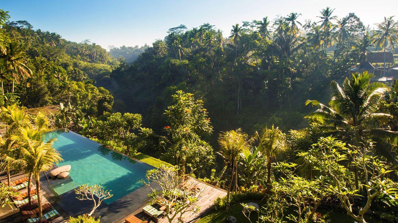 Swim In The Jungle ! Welcome To The Ubud's No Beach… Beach