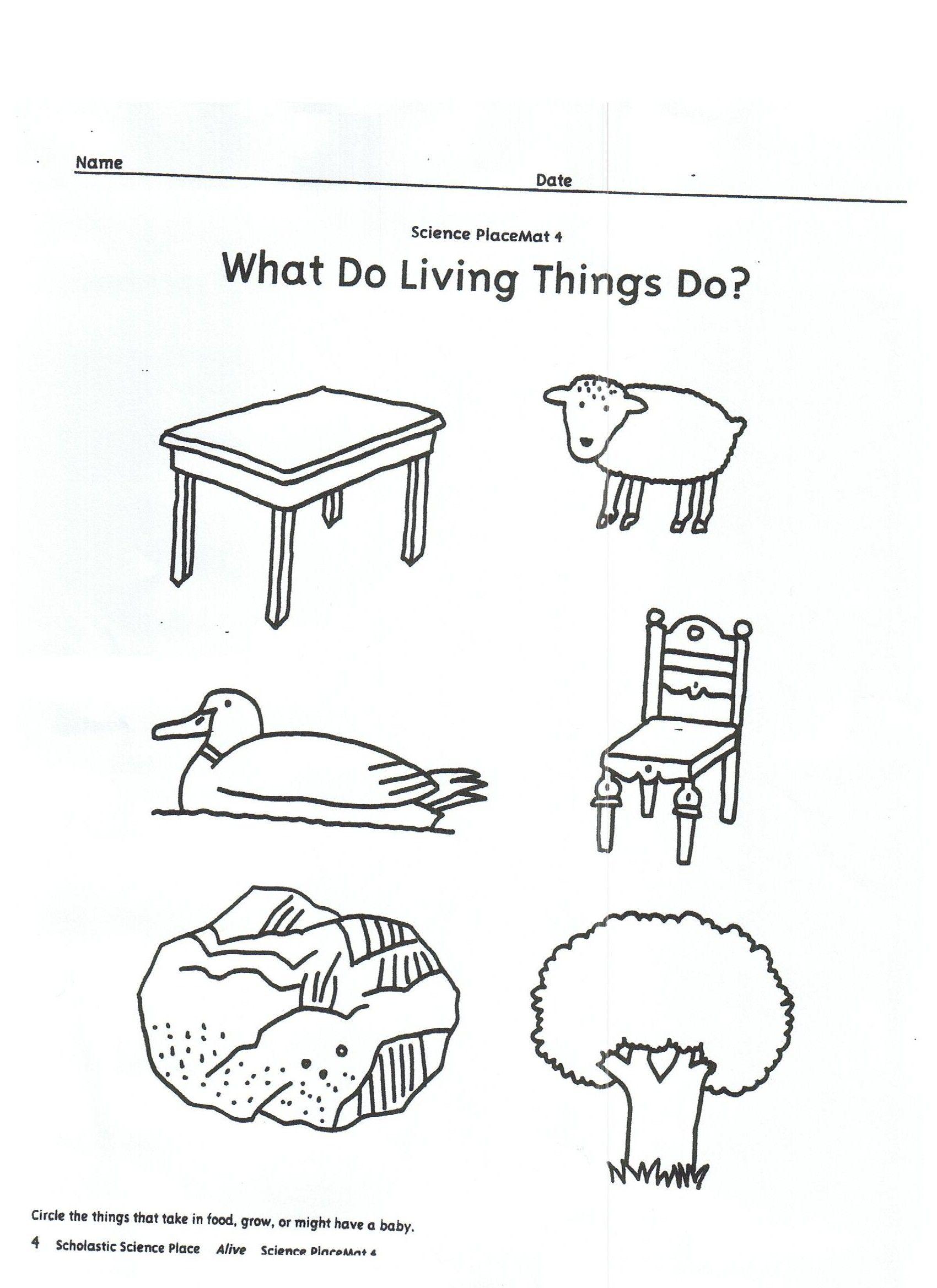 Living Vs Nonliving