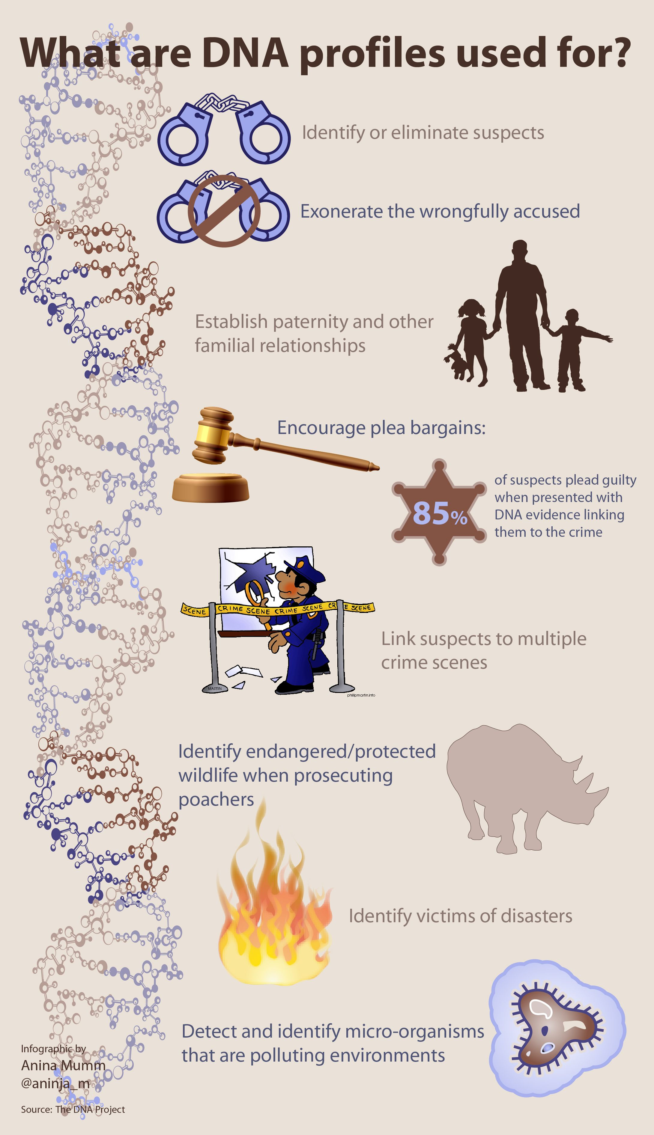Infographic What Dna Profiles Are Used For Info Courtesy Of The Dna Project S Website