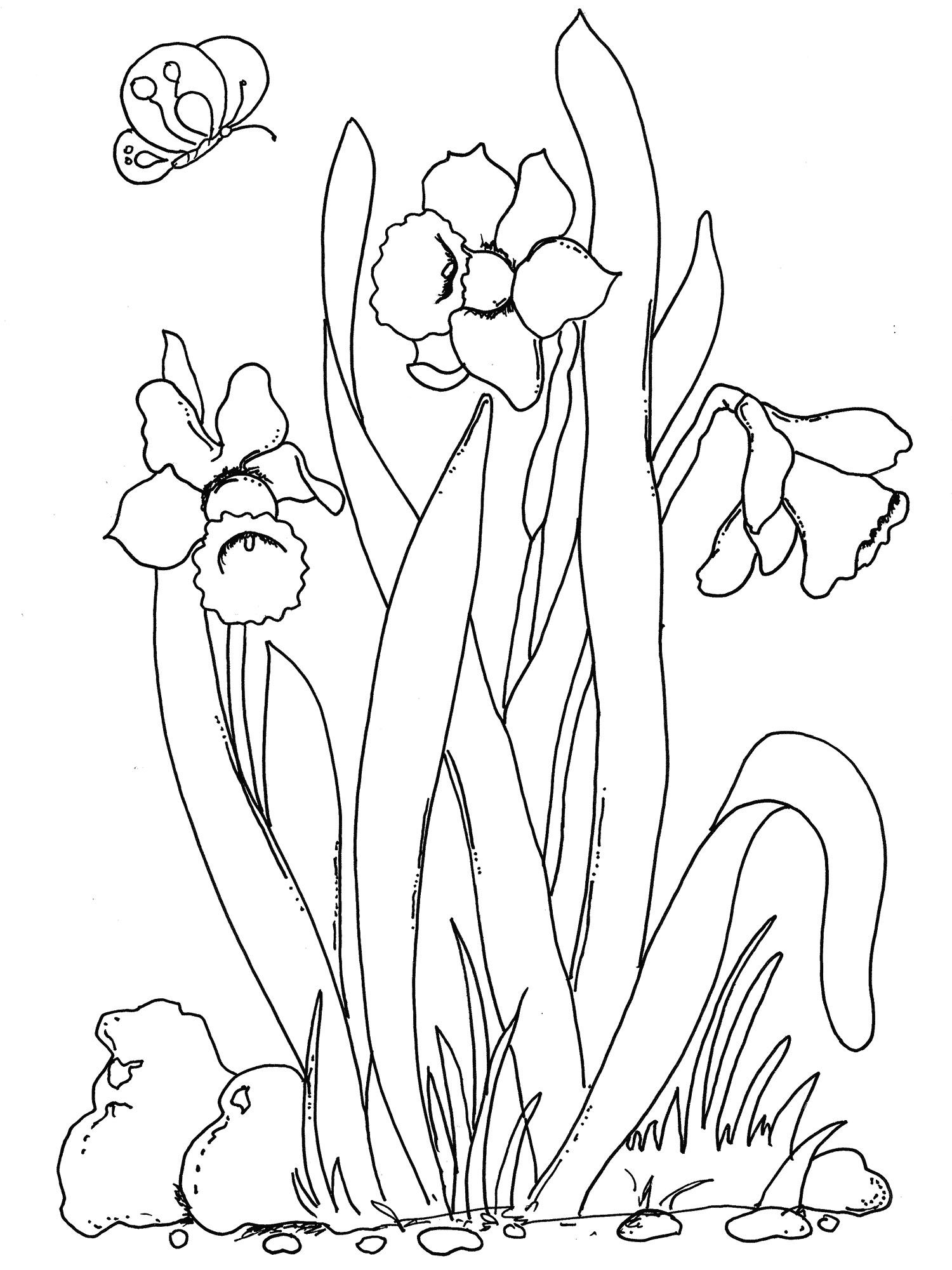 Beautiful Spring Flowers Coloring Pages By The Creativity Window