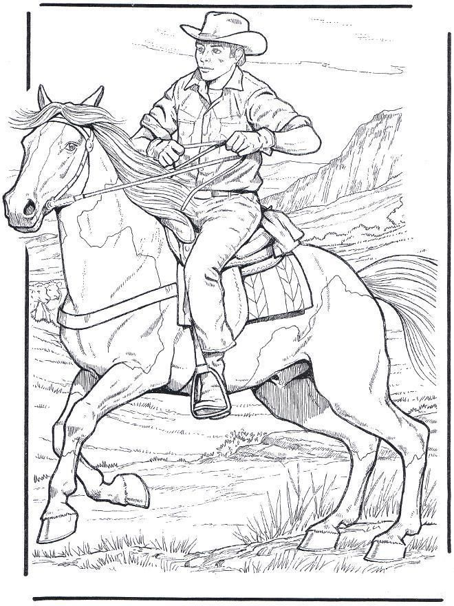 1000 images about coloring on pinterest horse coloring pages