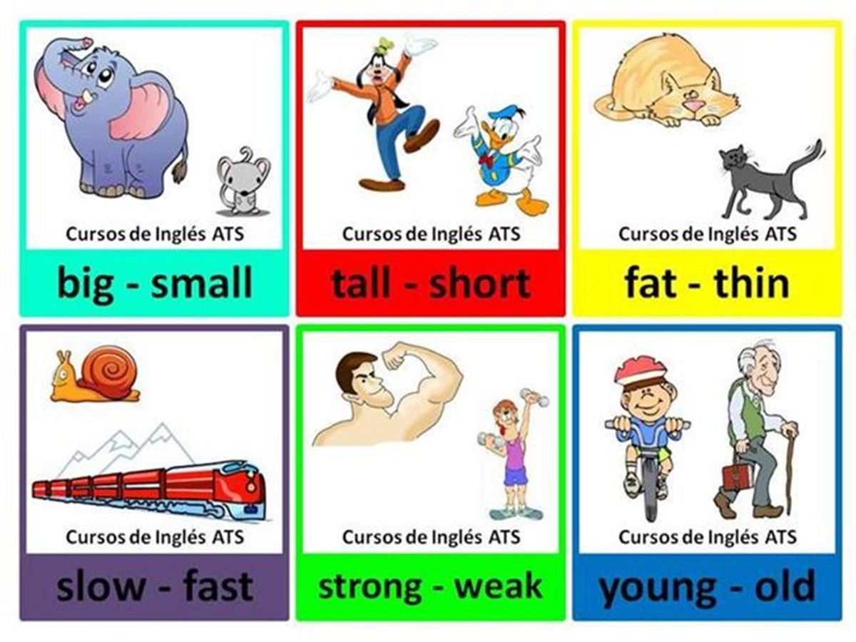 Common Opposite Words In English
