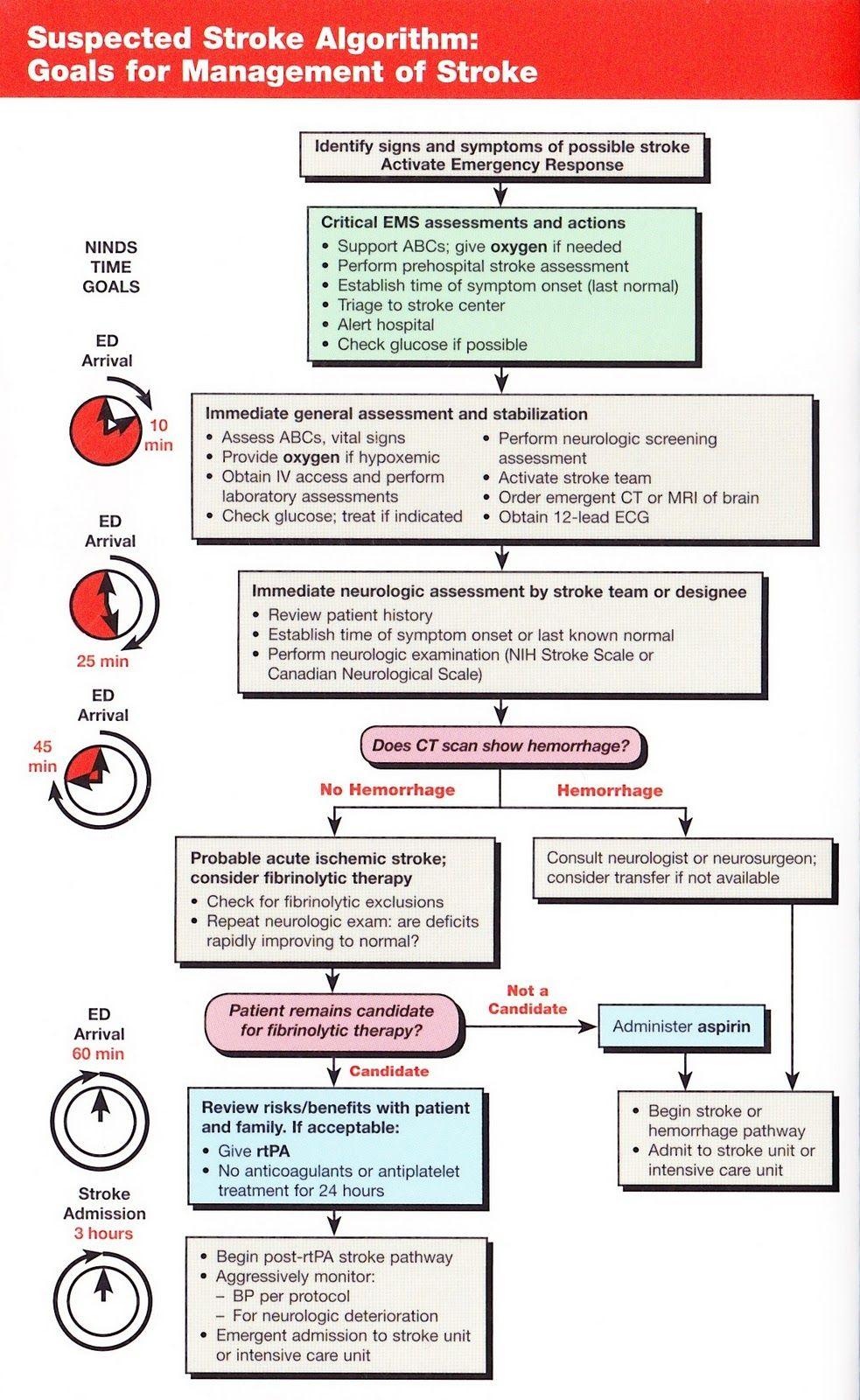 sc0010.jpg (983×1600) neuro Pinterest Nursing
