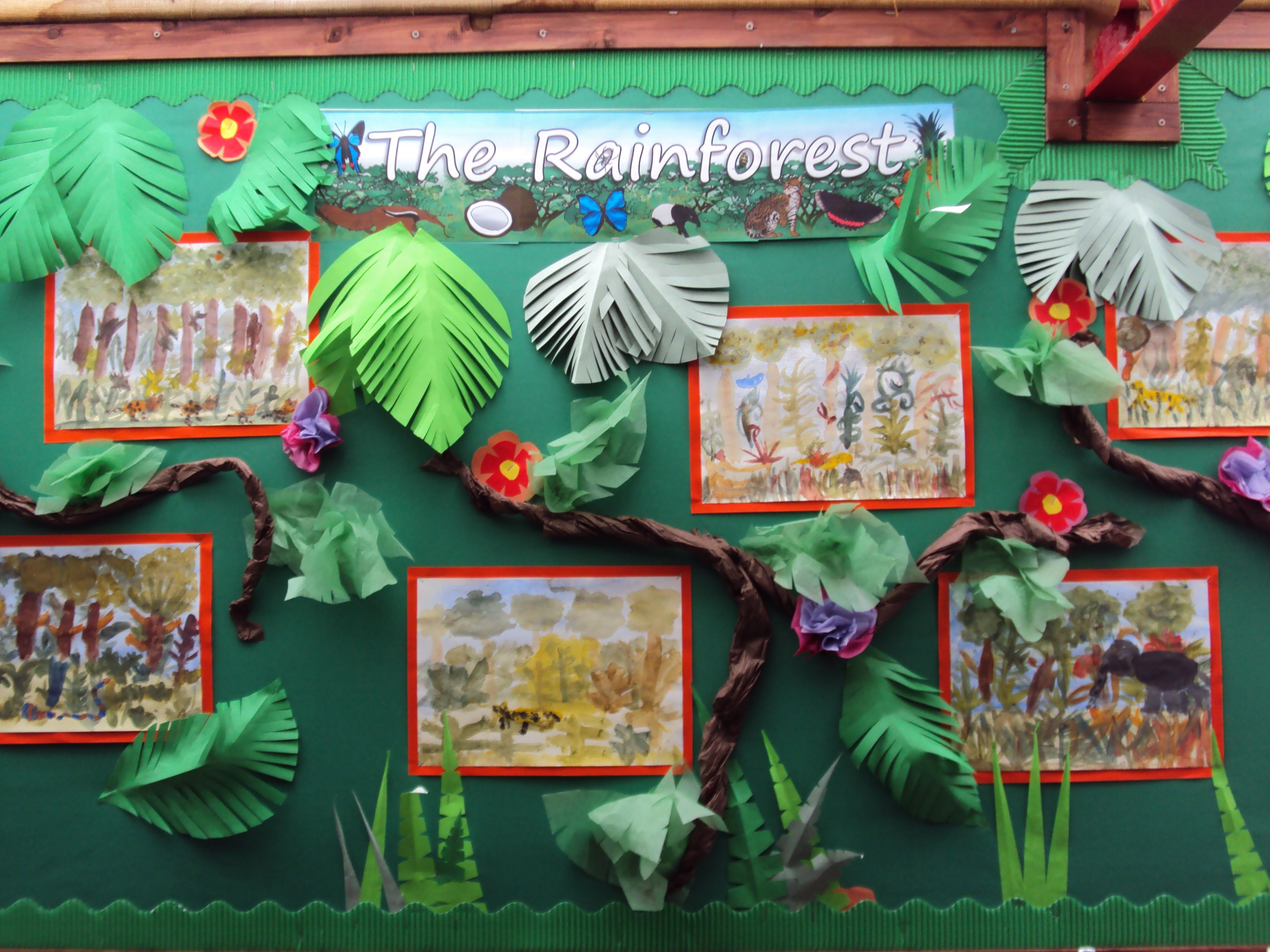 Year 3 Display Of Their Work On The Rainforests Of Brazil